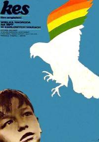 Kes (1969) plakat