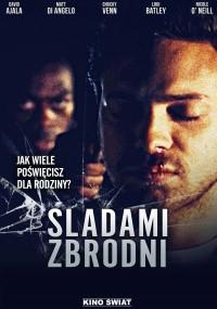 Śladami zbrodni (2010) plakat