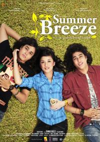 Summer Breeze (2008) plakat