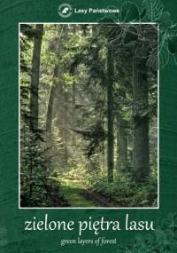 Zielone piętra lasu