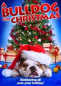 A Bulldog for Christmas (2013) plakat