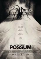 plakat - Possum (2018)