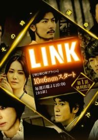 Link (2013) plakat