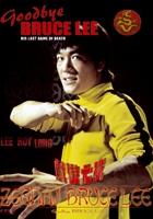 Bruce Lee: Ostatni pojedynek