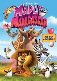 Zakochany Madagaskar (2013) plakat