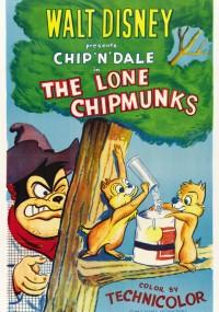 Waleczne wiewiórki (1954) plakat