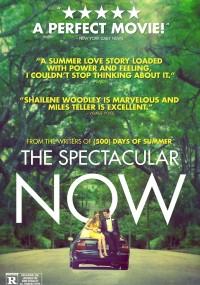 Cudowne tu i teraz (2013) plakat