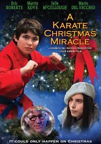 A Karate Christmas Miracle [2019] Cały Film Lektor PL Online