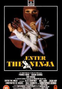 Wejście Ninja