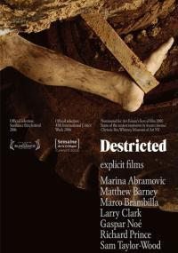 Destricted (2006) plakat