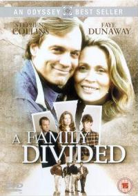 Rodzinny dylemat (1995) plakat