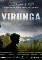 plakat - Virunga (2014)