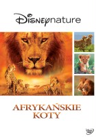 plakat - Afrykańskie koty (2011)