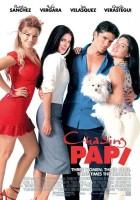plakat - Papi i dziewczyny (2003)