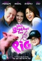Braciszek świnka (1999) plakat