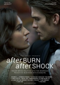 Afterburn/Aftershock (2017) plakat