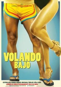 Volando Bajo (2014) plakat