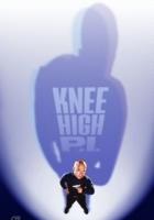 Knee High P.I. (2003) plakat