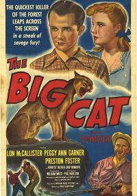 The Big Cat (1949) plakat