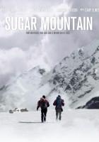 plakat - Sugar Mountain (2016)