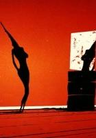 plakat - Laska (2008)