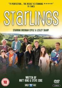 Starlings (2012) plakat