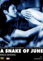Wąż czerwcowy