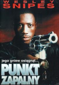 Punkt zapalny (1993) plakat