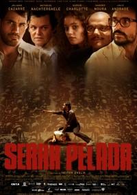 Serra Pelada (2013) plakat