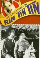 plakat - Przygody Rin Tin Tina (1954)
