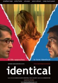 Identical (2012) plakat