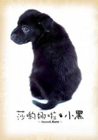 Sayônara Kuro (2003) plakat