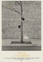 plakat - Dzikie kanarki (2014)