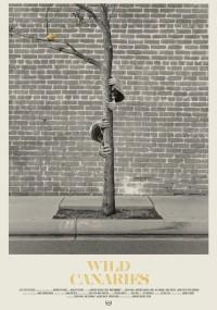 Dzikie kanarki (2014) plakat