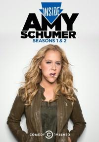 Inside Amy Schumer (2013) plakat