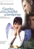 Sen nocy zimowej (2004) plakat