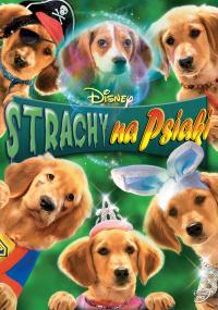 Strachy na psiaki (2011) plakat