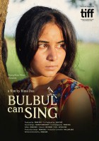 Zaśpiewaj to, Bulbul