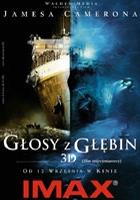 Głosy z głębin 3D (2003) plakat