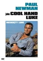 plakat - Nieugięty Luke (1967)