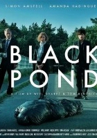Black Pond (2011) plakat
