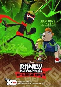 Randy Cunningham: Nastoletni ninja (2012) plakat