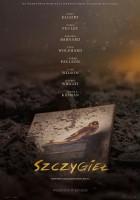 plakat - Szczygieł (2019)