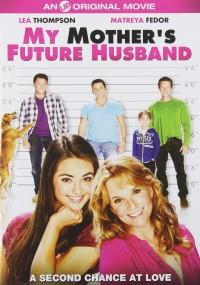Kandydat na męża (2014) plakat