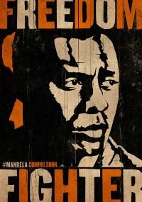 Mandela: Droga do wolności (2013) plakat