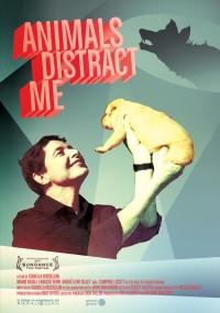 Animals Distract Me