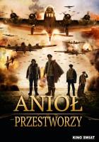 plakat - Anioł przestworzy (2013)