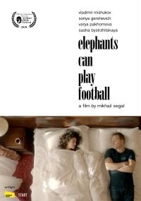 Słonie mogą w piłkę grać