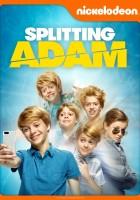 plakat - Adam i jego klony (2015)