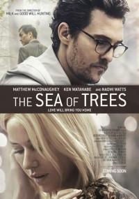Morze drzew